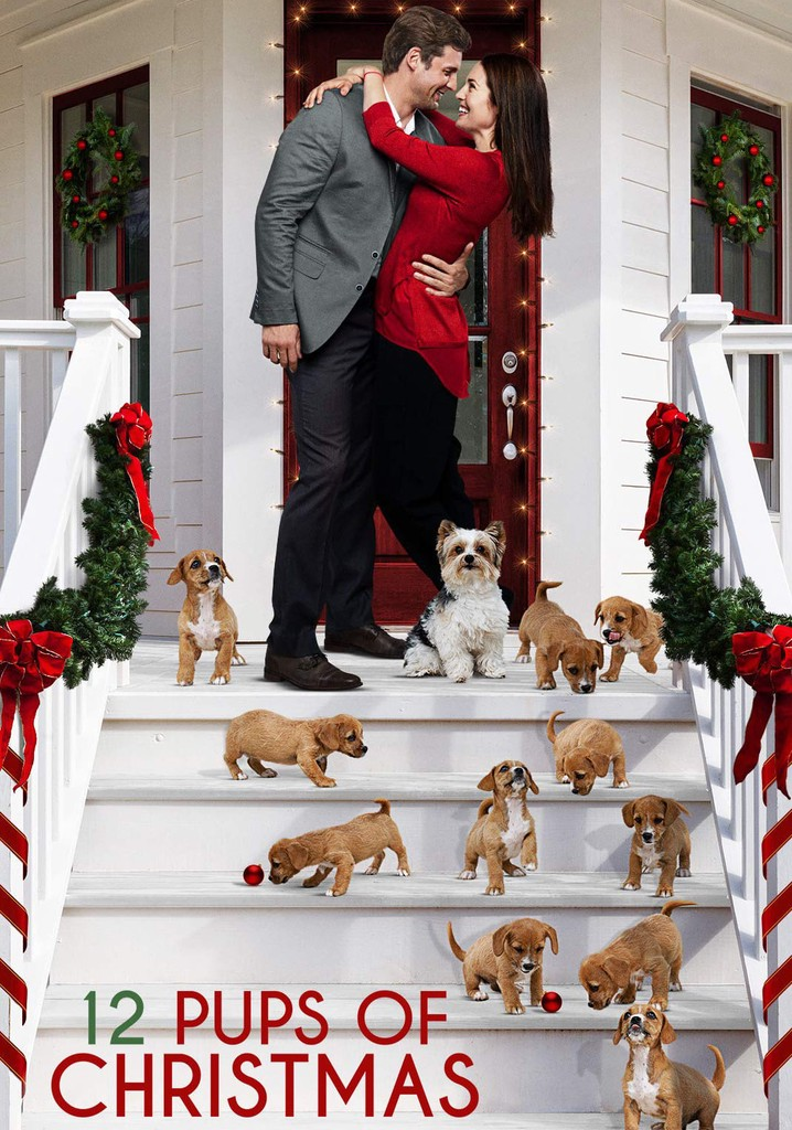 Where to watch 12 Pups of Christmas